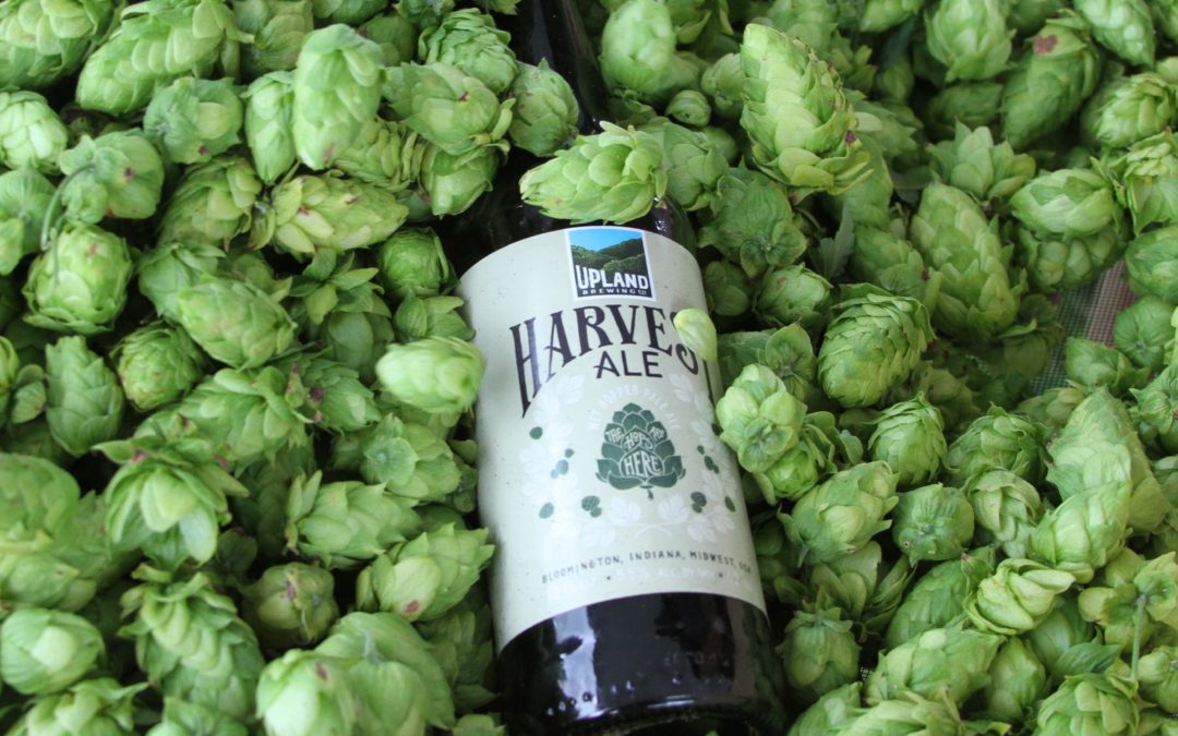 Ready to Harvest freshness?