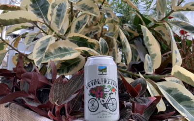 Upland Earns Bicycle Friendly Business Award